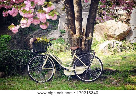 vintage bicycle in the spring garden