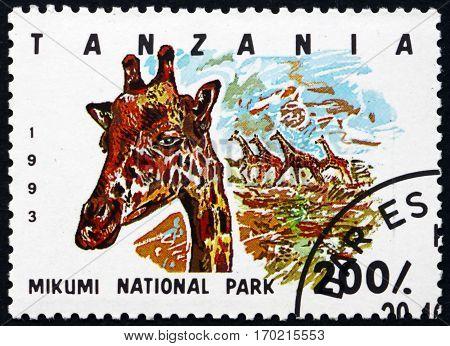 TANZANIA - CIRCA 1993: a stamp printed in Tanzania shows Giraffe (giraffa camelopardalis) Mikumi national park circa 1993