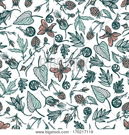 Seamless pattern with wild plants, berries, flowers. Botanical background. Cloudberry, violet, Geum Rivale, ferns, bluebells. Spring theme. Hand drawn.