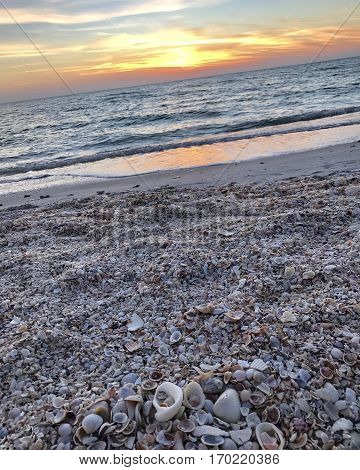 A gorgeous sunset over a sandy seashore full of shells.