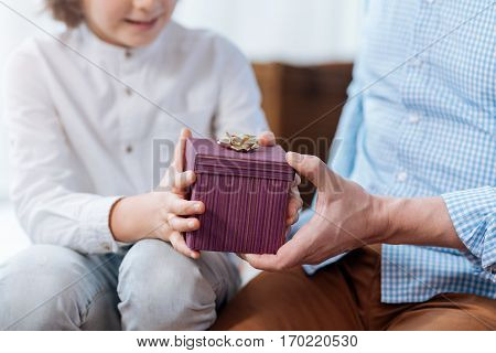 Small present. Close up of a small purple gift box tied with a bow while being in hands of pleasant nice delighted father and son