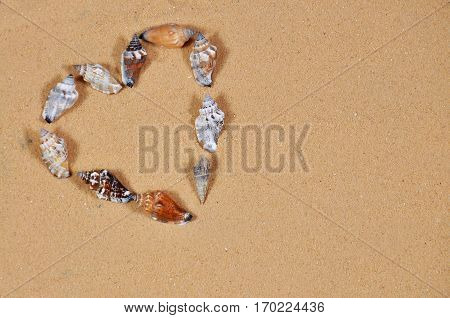 Hart shape made by sea shells on the beach. Present for valentines