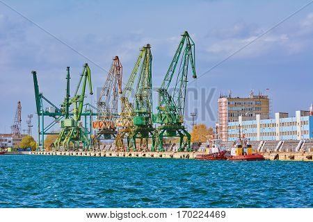 Port Cranes on the Docks of the Port