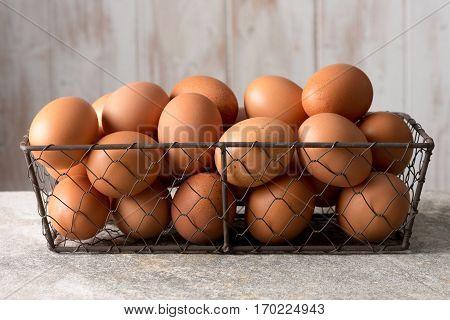Hen Eggs In Mesh Wire Tray