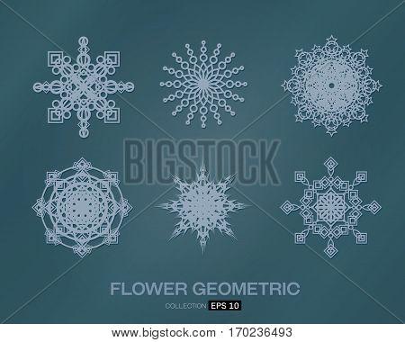 flower pattern set  on background vector illustration