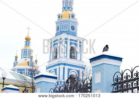 Crow sitting on the fence near the church. Holy Ascension Cathedral in Ulyanovsk Russia.