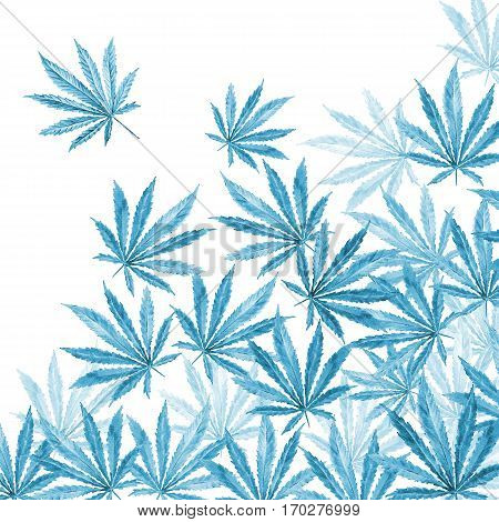 Cannabis leaves on white background. Hand drawn watercolor illustration of the plant Cannabis Sativa or Marijuana.