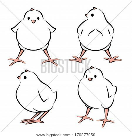Vector Illustration Of A Baby Bird From Four Angles