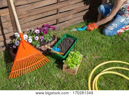 Woman wearing gardening gloves holding grass shears cutting an edge of the lawn