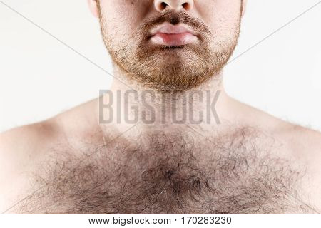 Close up of man moustache, beard and hairy chest.