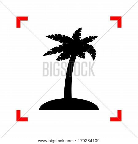 Coconut palm tree sign. Black icon in focus corners on white background. Isolated.