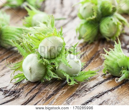 Young hazelnuts on the wooden table.