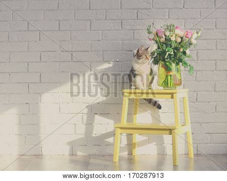 Cute funny cat and bouquet of flowers on step ladder near brick wall