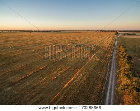 Yellow Harvested Agricultural Fields At Sunset Aerial View.