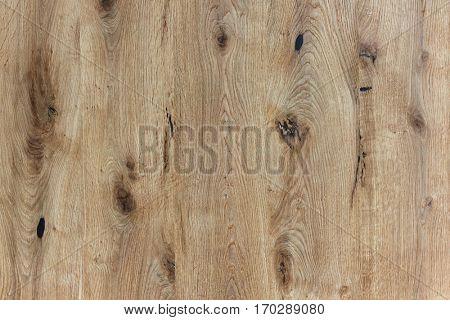 oak knotty wood texture