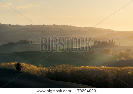 Italy. Tuscany. Autumn evening in the valley of Val d'Orcia