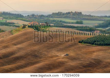 Italy. Tuscany. Fields at Villa Agriturismo Baccoleno