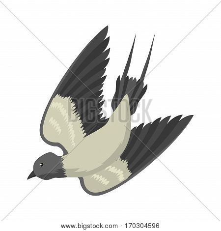 Swallow vector illustration isolated bird flying. Black and white cute color little animal character. Vintage art freedom fly flock wildlife drawing.