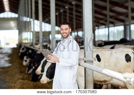 agriculture industry, farming, people and animal husbandry concept - veterinarian or doctor with tablet pc computer and herd of cows in cowshed on dairy farm