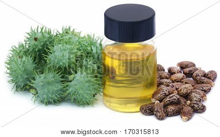Castor oil with dry and green beans over white background