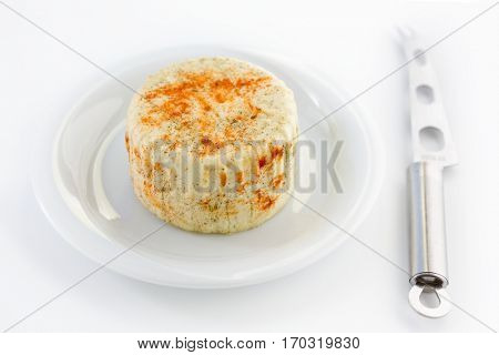 Homemade spicy cheese photo shoot on a white plate