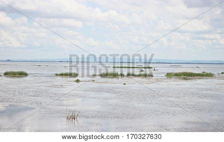 Freshwater lake at Sakon Nakhon province in Thailand.