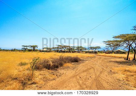 A view of african savannah with dirt road and trail