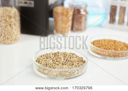 Food laboratory. Test for pesticides in seeds of agricultural plants