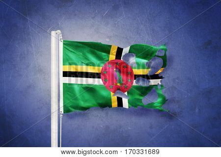 Torn flag of Dominica flying against grunge background.