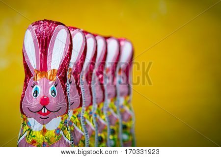 Chocolate Easter bunny figure. Easter chocolate rabbit figurines.with copy space