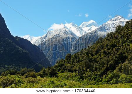 Mt Tasman and The Southern Alps From The Waiho River Valley.  Westland National Park, New Zealand.