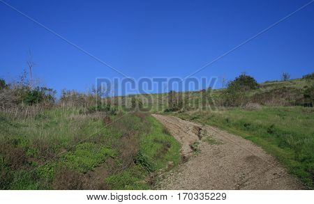 Wide dirt path leading up a green hillside, Orange County, CA