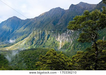 Waterfall and Beech Forest on The Kepler Track.  Fjordland National Park, Southern Alps, New Zealand.