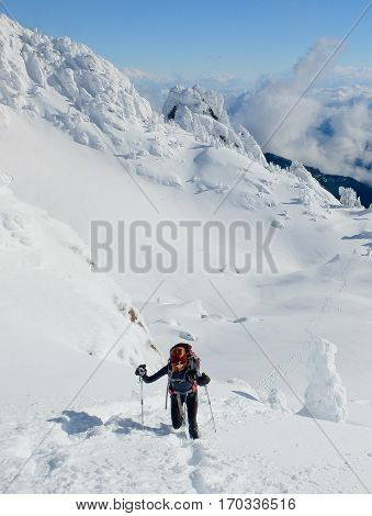 A Woman Hiker Ascending Mt Ellinor in Winter.  Olympic National Park, Washington.
