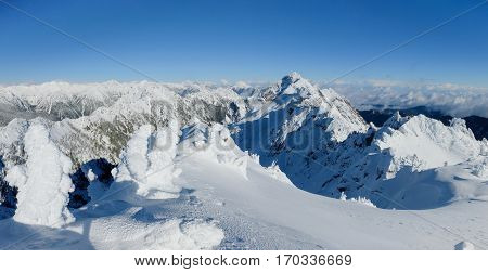 Panoramic Summit Views From Mt Ellinor.  Olympic National Park, Washington.