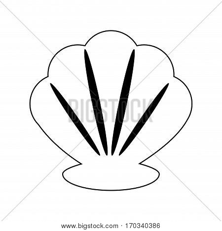 shell icon over white background. vector illustration