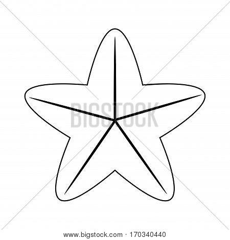 sea star icon over white background. vector illustration