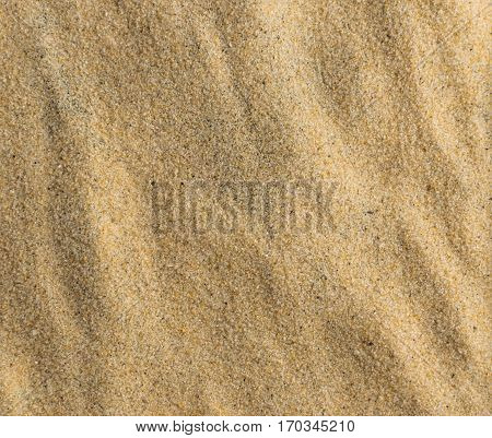 Embossed Background of Pure Fine Sea Sand Close Top View