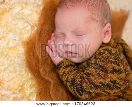 asleep funny baby boy in brown suit with hands under his head and lovely lips