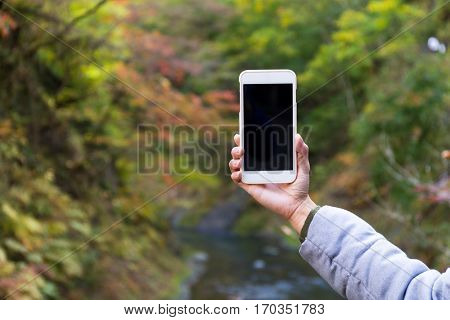 Woman taking cellphone in autumn forest