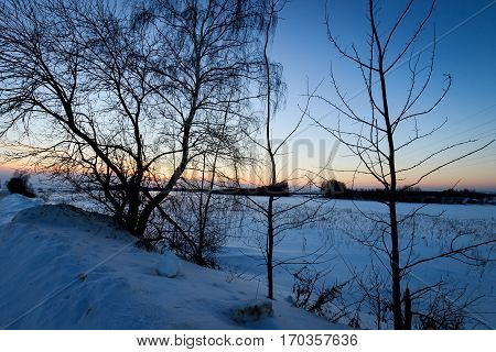 Twilight At Field In Winter With Tree At Foreground.