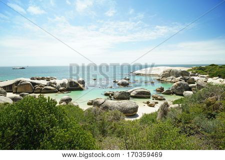View of Boulders beach, Simon's town, South Africa