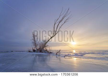winter dawn on the river / bright photograph of a winter landscape Ukraine