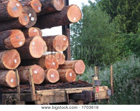 Train Or Logs