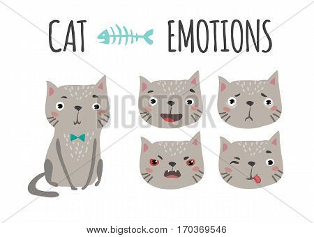 Cute funny cats set various emotions. Cat in cartoon style.