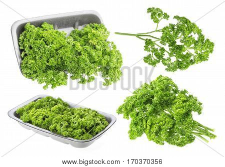 Parsley in plastic wrap packaging isolated on white background