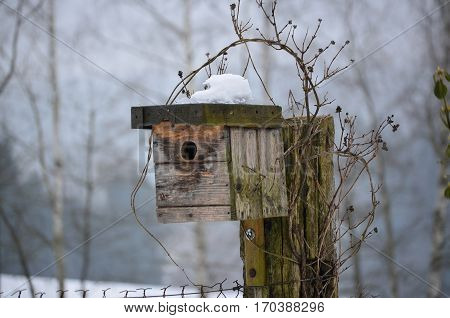 birdhouse in winter South Bohemia Czech Republic