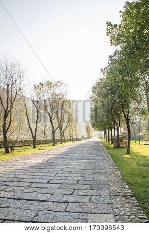 block stone walkway inside large garden near mountain
