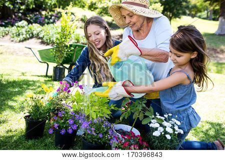 Multi-generation family gardening in the park on a sunny day