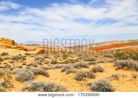 Color Diversity in the Valley of Fire State Park in Nevada, USA